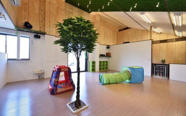 Memory tree 赤池保育園